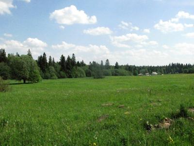 Земельный участок, Черемыкино